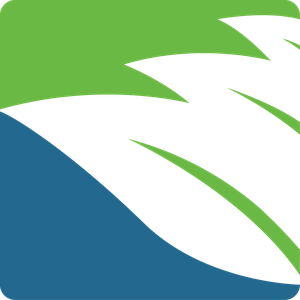 NetBattery logo