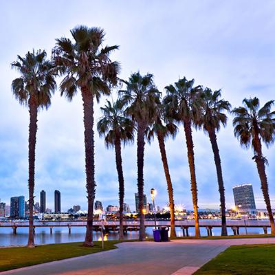 YCP San Diego