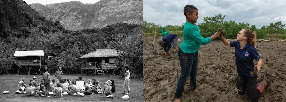 Peace Corps training 1960s, Panama mangrove reforestation 2019