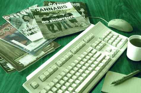MCIA Cannabis New & Articles