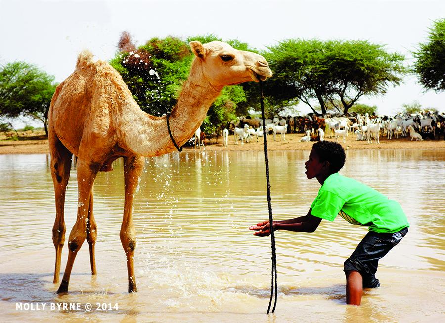 International calendar 2022 - Niger