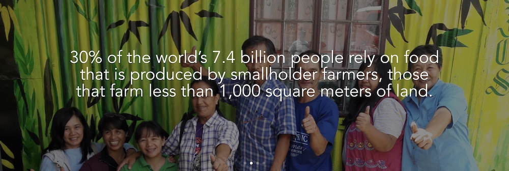 Global Seed Savers statistics