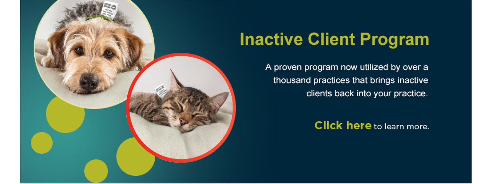 PHP Inactive Client Program